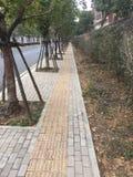 Διάδρομοι και διάδρομοι στο πάρκο στοκ φωτογραφία