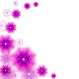 Διάθεση λουλουδιών στοκ εικόνες