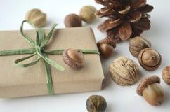Διάθεση πτώσης Βελανίδια, καρύδια και σπόροι δέντρων με έναν κώνο πεύκων και ένα δώρο-τυλιγμένο κιβώτιο στο καφετί έγγραφο και ra Στοκ Φωτογραφία