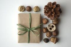 Διάθεση πτώσης Βελανίδια, καρύδια και σπόροι δέντρων με έναν κώνο πεύκων και ένα δώρο-τυλιγμένο κιβώτιο στο καφετί έγγραφο και ra Στοκ Εικόνα