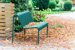 Διάθεση φθινοπώρου, πάγκος, σκληρό ξύλο στοκ εικόνα