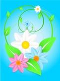 διάνυσμα άνοιξη λουλουδιών Στοκ Εικόνα