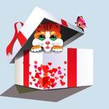Διάνυσμα, γατάκι-δώρο Στοκ Φωτογραφία