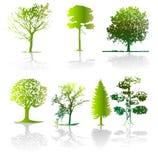 διάνυσμα δέντρων απεικόνισης Στοκ φωτογραφίες με δικαίωμα ελεύθερης χρήσης