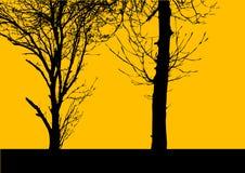διάνυσμα δέντρων κίτρινο Στοκ Εικόνα