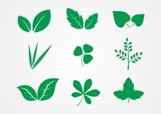 Διάνυσμα εικονιδίων φύλλων και φυτών στοκ φωτογραφία με δικαίωμα ελεύθερης χρήσης