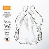 Διάνυσμα κρέατος κοτόπουλου Στοκ εικόνες με δικαίωμα ελεύθερης χρήσης
