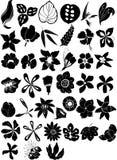 διάνυσμα λουλουδιών σ&upsil Στοκ εικόνες με δικαίωμα ελεύθερης χρήσης