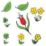 διάνυσμα λουλουδιών Στοκ εικόνες με δικαίωμα ελεύθερης χρήσης
