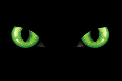 διάνυσμα ματιών γατών διανυσματική απεικόνιση