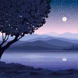διάνυσμα νύχτας τοπίων Διανυσματική απεικόνιση