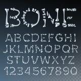 Διάνυσμα πηγών κόκκαλων Ανατομία επιστολών Αλφάβητο ABC Ύφος σκελετών Τρομακτικό αλφάβητο κόλασης Διαφανής απεικόνιση απεικόνιση αποθεμάτων