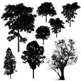Διάνυσμα σκιαγραφιών δέντρων Στοκ φωτογραφία με δικαίωμα ελεύθερης χρήσης