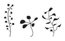 διάνυσμα σκιαγραφιών φυτώ& Στοκ φωτογραφία με δικαίωμα ελεύθερης χρήσης