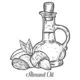 Διάνυσμα σπόρου μπουκαλιών πετρελαίου καρυδιών αμυγδάλων Στην άσπρη ανασκόπηση Συστατικό τροφίμων γάλακτος αμυγδάλων Χαραγμένο συ απεικόνιση αποθεμάτων