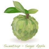 Διάνυσμα της Apple ζάχαρης Διανυσματική απεικόνιση