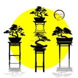 Διάνυσμα του δέντρου μπονσάι στο υπόβαθρο Απεικόνιση αποθεμάτων