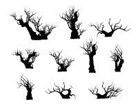 Διάνυσμα του δέντρου μπονσάι στο υπόβαθρο Στοκ Φωτογραφία