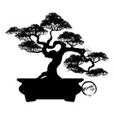 Διάνυσμα του δέντρου μπονσάι στο υπόβαθρο Στοκ φωτογραφίες με δικαίωμα ελεύθερης χρήσης