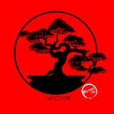 Διάνυσμα του δέντρου μπονσάι στο υπόβαθρο Στοκ Εικόνα