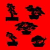 Διάνυσμα του δέντρου μπονσάι στο υπόβαθρο Στοκ Φωτογραφίες