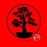Διάνυσμα του δέντρου μπονσάι στο υπόβαθρο Στοκ Εικόνες