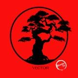 Διάνυσμα του δέντρου μπονσάι στο υπόβαθρο Ελεύθερη απεικόνιση δικαιώματος