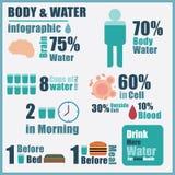 Διάνυσμα του νερού σωμάτων infographic Στοκ Εικόνες