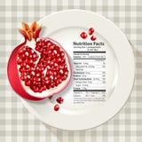 Διάνυσμα των γεγονότων διατροφής στο ρόδι στο άσπρο πιάτο Στοκ φωτογραφία με δικαίωμα ελεύθερης χρήσης
