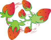 διάνυσμα φραουλών μιγμάτω& διανυσματική απεικόνιση