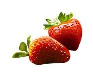 διάνυσμα φραουλών Διανυσματική απεικόνιση