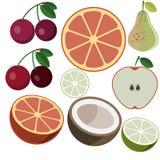 Διάνυσμα φρούτων Στοκ Εικόνες