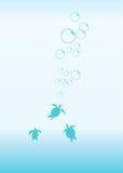 διάνυσμα χελωνών Ελεύθερη απεικόνιση δικαιώματος
