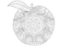 Διάνυσμα χρωματισμού φρούτων της Apple για τους ενηλίκους Στοκ Εικόνες