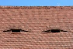 Διάσημα μάτια Στέγη με τα μάτι-όπως παράθυρα Στοκ εικόνες με δικαίωμα ελεύθερης χρήσης