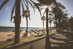 Διάσημες παραλίες Tenerife, Playa las Αμερική και Playas Del Camison την ηλιόλουστη ημέρα Στοκ Εικόνες