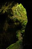 Διάσημη είσοδος σπηλιών στο εθνικό πάρκο Semenic Στοκ φωτογραφία με δικαίωμα ελεύθερης χρήσης