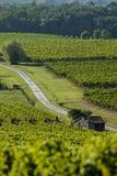 Διάσημη διαδρομή κρασιού στους αμπελώνες του Μπορντώ, Aquitaine στοκ εικόνα με δικαίωμα ελεύθερης χρήσης