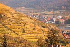 Διάσημοι αμπελώνες σε Wachau, Spitz, Αυστρία στοκ φωτογραφία με δικαίωμα ελεύθερης χρήσης