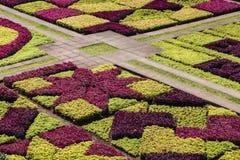 Διάσημοι τροπικοί βοτανικοί κήποι στην πόλη του Φουνκάλ, Μαδέρα islan στοκ εικόνες