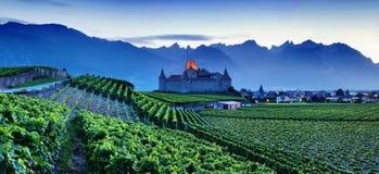 Διάσημος πύργος δ ` Aigle κάστρων στο καντόνιο Vaud, Ελβετία Το Castle σε Aigle αγνοεί τους περιβάλλοντες αμπελώνες και τις Άλπει στοκ εικόνα