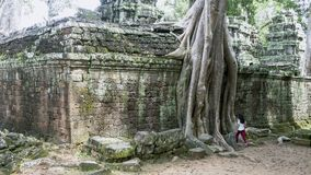 Διάσημο ορόσημο της Καμπότζης στοκ φωτογραφία με δικαίωμα ελεύθερης χρήσης