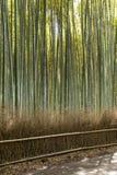 Διάσημο ορόσημο του Κιότο Ιαπωνία βουνών Arashiyama για τον τουρίστα με το δάσος μπαμπού Στοκ φωτογραφίες με δικαίωμα ελεύθερης χρήσης