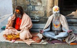 Διάσημο χρωματισμένο sadhu Στοκ Φωτογραφίες