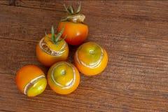 Διάσπαση, ραγισμένες ντομάτες λόγω της βροχής μετά από την ξηρασία, πρόβλημα κηπουρικής στοκ εικόνα