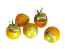 Διάσπαση, ραγισμένες ντομάτες λόγω της βροχής μετά από την ξηρασία, πρόβλημα κηπουρικής στοκ φωτογραφία με δικαίωμα ελεύθερης χρήσης