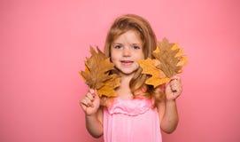 διάστημα αντιγράφων για τη διαφήμιση Δέντρο φθινοπώρου και δασικός έτοιμος φθινοπώρου για το κείμενο Έννοια Νοεμβρίου βροχής και  στοκ εικόνες