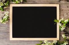 Διάστημα αντιγράφων σε έναν μαύρο πίνακα με τους όμορφους κλάδους του λουλουδιού Στοκ Φωτογραφία