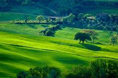 διάστικτοι πράσινοι λόφο&iot Στοκ εικόνες με δικαίωμα ελεύθερης χρήσης