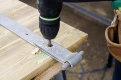 Διάτρηση ξυλουργών Στοκ Φωτογραφίες